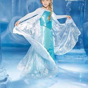 Chasing Fireflies Elsa Disney Costume Halloween